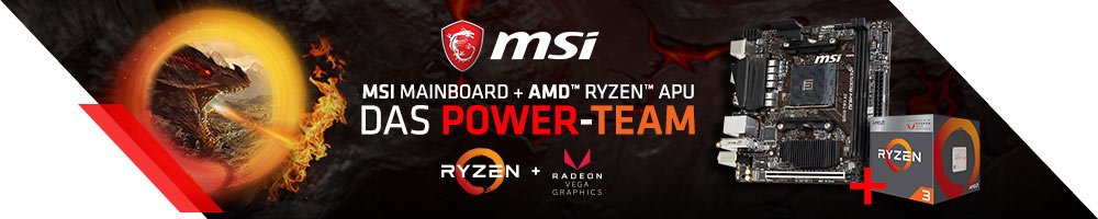 MSI MAINBOARD + AMD™ Ryzen™ APU