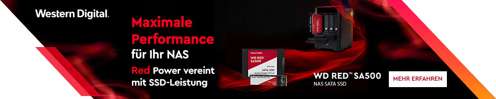 WD Red™ SA500