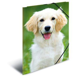 "Herma Eckspannermappe ""Hunde"", aus PP, DIN A4"