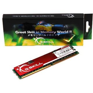 1GB G.Skill NQ Series DDR2-800 DIMM CL5 Single