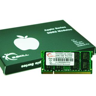 1GB G.Skill SQ Series DDR2-667 SO-DIMM CL5 Single