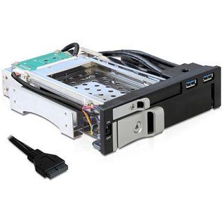 """Delock 2x USB 3.0 5.25"""" Wechselrahmen für 2.5"""" und 3.5"""" Festplatten (47209)"""