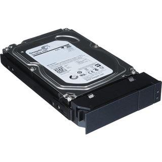 Promise 2TB Ersatzlaufwerk für Pegasus r4, r6 (F40000012000000)