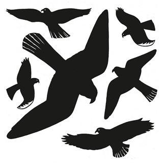 Herma Fensterdecor Warnvögel 30x30 cm